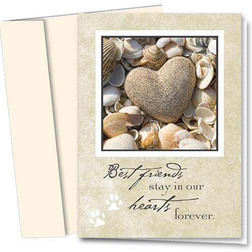 Pet Sympathy Cards - Heart and Shells