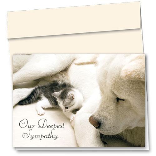 Pet Sympathy Cards - Safe Place