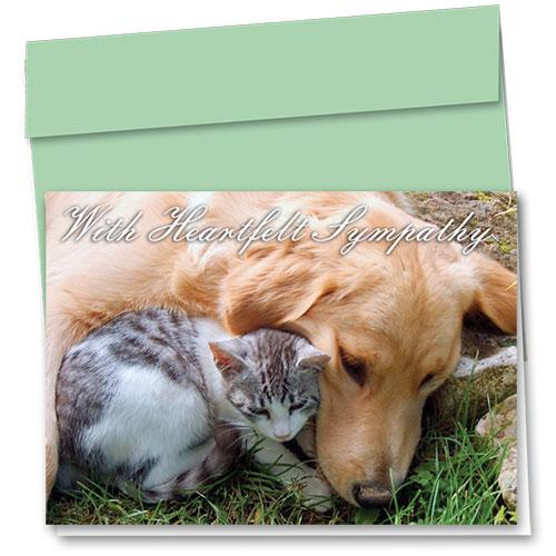 Pet Sympathy Cards - Bo & Charlie Sympathy