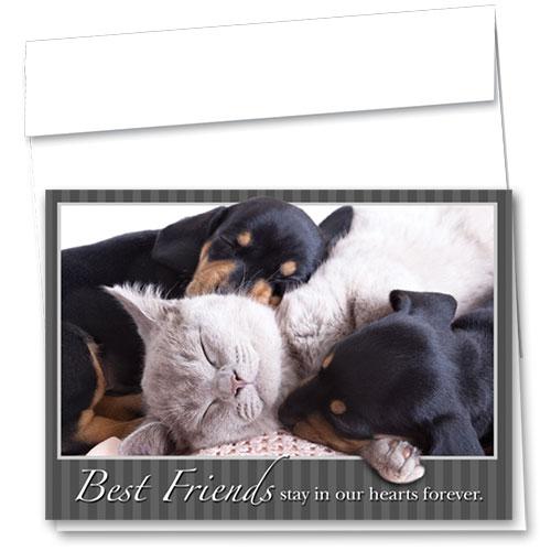 Pet Sympathy Cards - Cozy Cuddle