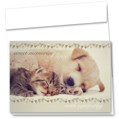 Pet Sympathy Cards - Sweet Rest
