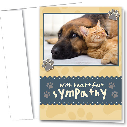 Pet Sympathy Cards - Sweet Friend