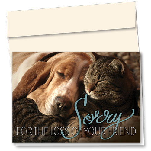 Pet Sympathy Cards - Nuzzled Condolence
