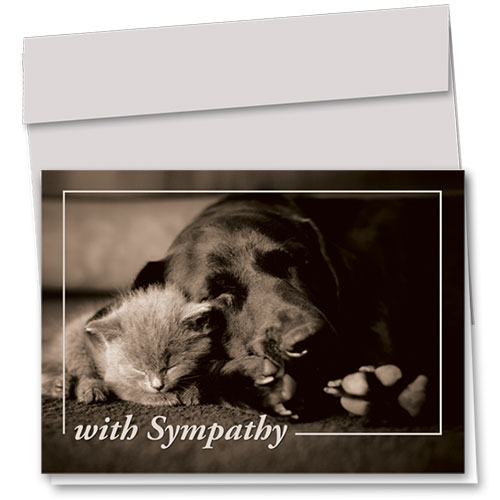 Pet Sympathy Cards - Comforting Cuddle