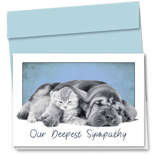 Pet Sympathy Cards - Heavy Hearts