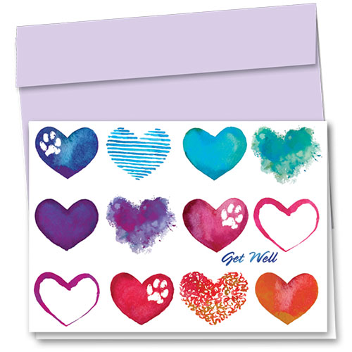 Pet Get Well Cards - Colors