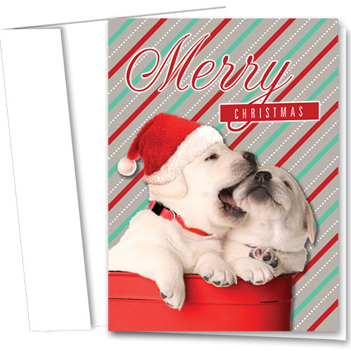 Veterinary Holiday Cards - Playful Pups