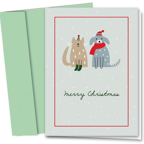 Veterinary Holiday Cards - Green Socks