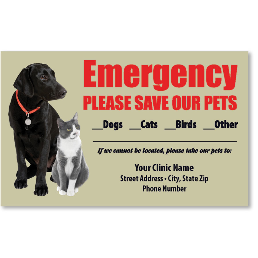 Pet Safety Sticker - Black Lab