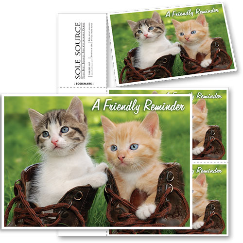 3-Up Veterinary Postcards - Boots