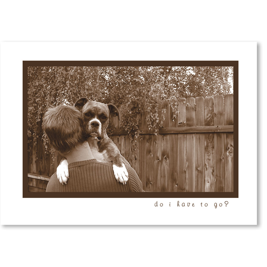 Standard Veterinary Reminder Postcards - Backyard Hug