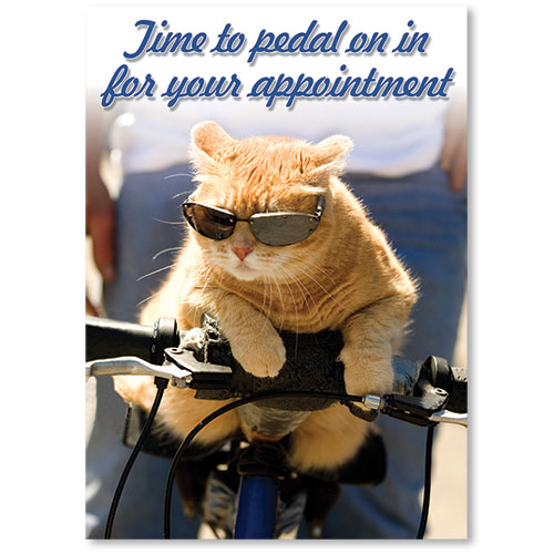 Standard Veterinary Reminder Postcards - Pedal In