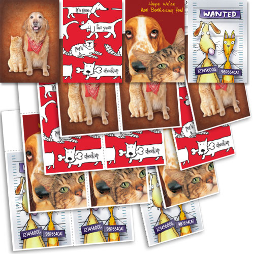 Clearance - Veterinary Reminder Postcards Assortment 2