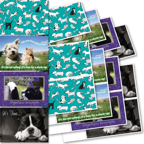 Clearance - Veterinary Reminder Postcards Assortment 5