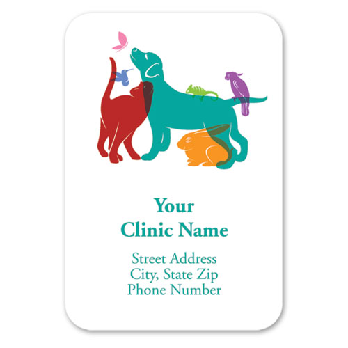 Full-Color Veterinary Magnets - Rainbow Silhouette