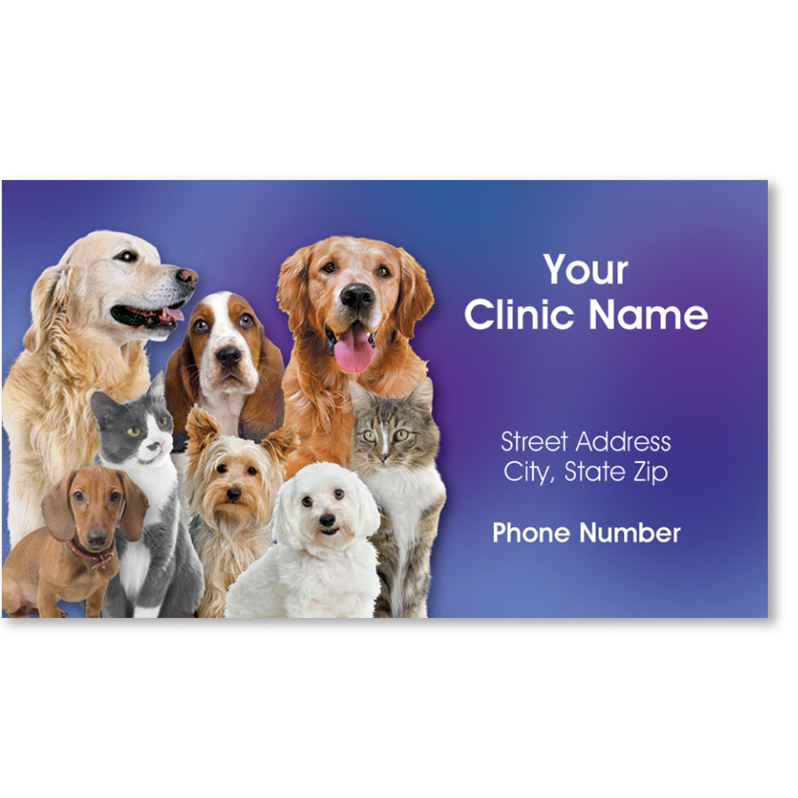 Full-Color Magnetic Business Cards - Family Portrait | Veterinary ...