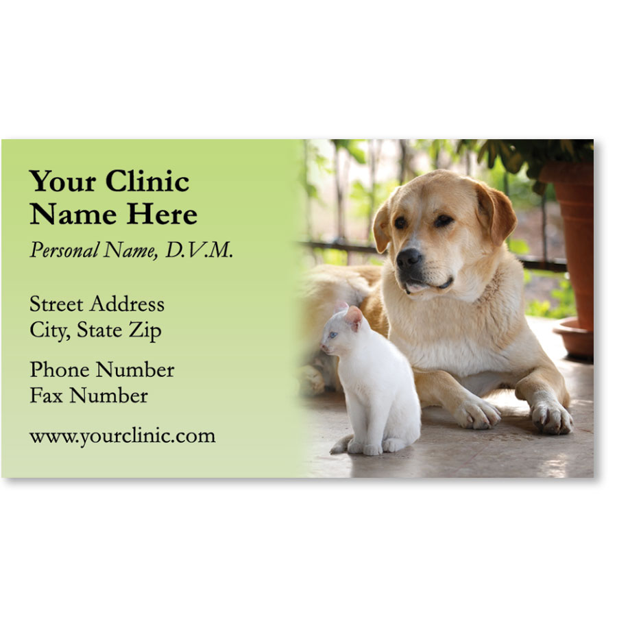 Full-Color Veterinary Magnetic Business Cards - Peaceful Afternoon