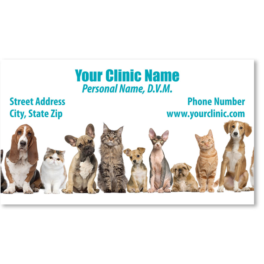 Full-Color Veterinary Magnetic Business Cards - Friendly Lineup