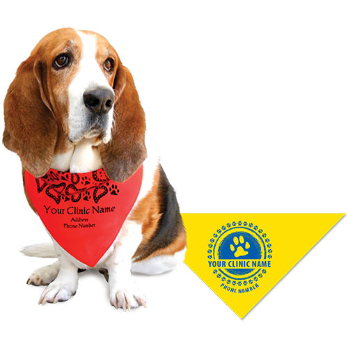 Large Triangle Personalized Pet Bandanas