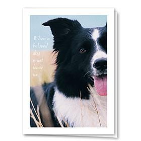 Dog Sympathy Cards - Sleep at God's Feet