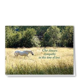 Pet Sympathy Cards - White Stallion
