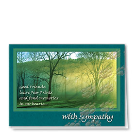 Sympathy Card-Forest Light