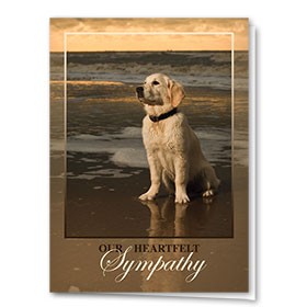 Sympathy Card-Golden Goodbye