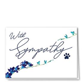 Pet Sympathy Cards - Elegant Lines
