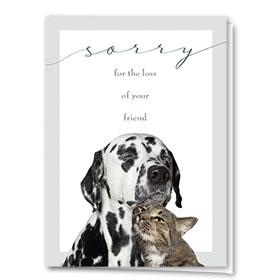 Pet Sympathy Cards - Sorry Friend