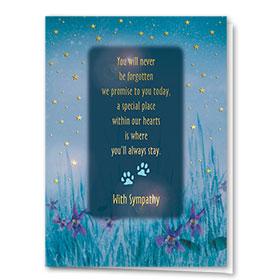 Premium Foil Sympathy Card-Sympathy Stars