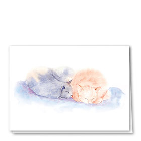 Multi-Purpose Veterinary Cards - Sleeping Kittens