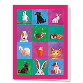 Multi Purpose Veterinary Cards