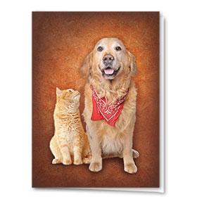 Multi-Purpose Veterinary Cards - Bandanna Buddies