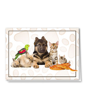 Multi-Purpose Veterinary Cards - All Kinds