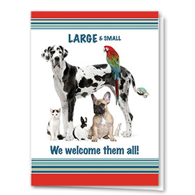 Veterinary Welcome Cards - Large & Small