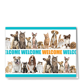 Veterinary Welcome Cards - Welcome Line-Up