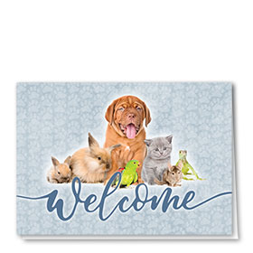 Veterinary Welcome Cards -Paws and Claws