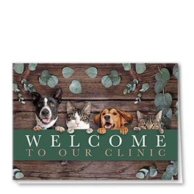 Veterinary Welcome Cards - Welcome Squad