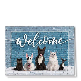 Veterinary Welcome Cards - Welcome Wall