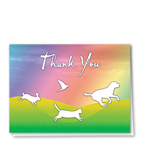 Veterinary Thank You Cards - Rainbow