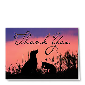 Veterinary Thank You Cards - Sunset