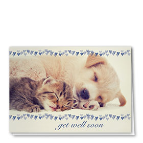 Pet Get Well Cards - Rest