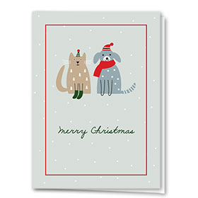 Veterinary Holiday Cards - Green Socks
