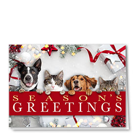 Veterinary Holiday Cards - Greetings Gift