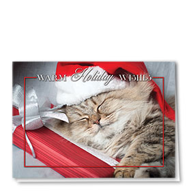 Veterinary Holiday Cards - Holiday Cat