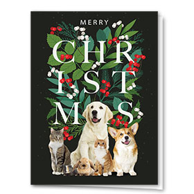Veterinary Holiday Cards - Christmas Friends