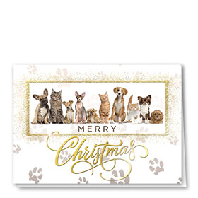 Foil Veterinay Holiday Cards - Gold Crew