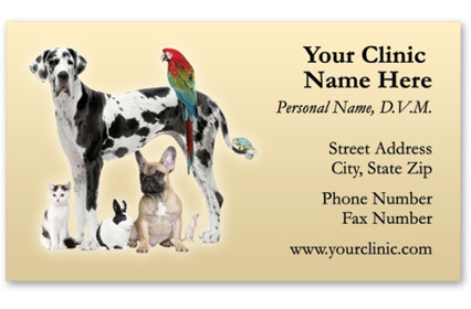 Veterinary Business Cards w/ Appointment - Large & Small