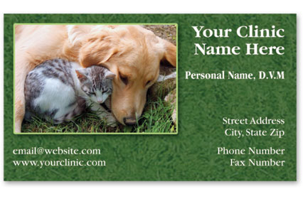 Veterinary Business Cards w/ Appointment - Bo & Charlie
