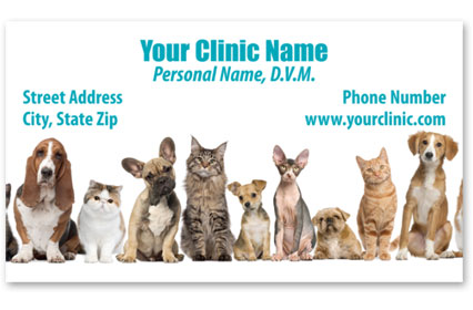 Veterinary Business Cards w/ Appointment - Friendly Lineup